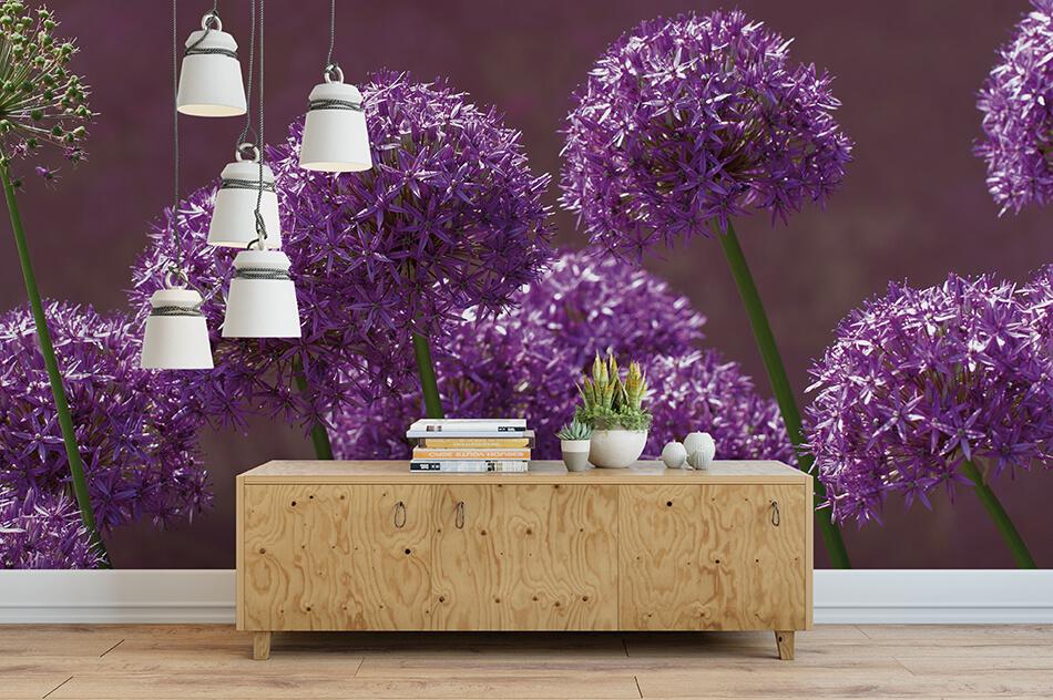 Fototapete - Allium - Gaby Jacob